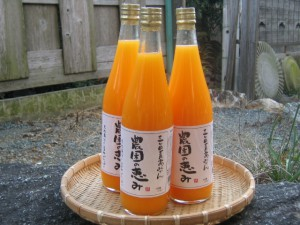 三ヶ日青島みかんジュース(農園の恵み)
