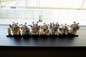 いらっしゃいませ〜招き猫たち